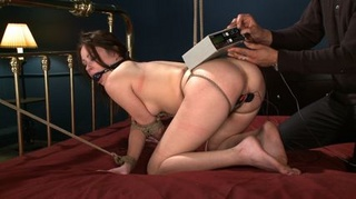 bitch hogtied tight and